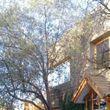 Venta de Casa en Bosques de Montemar