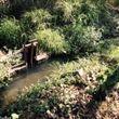 Terreno en Venta en Lomas de Jiutepec