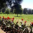 Linda parcela de agrado, comuna El Monte