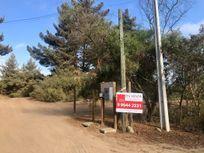 Se vende terreno de 2.000 m2, en Los Pinos, Reñaca