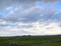 Espectacular campo para siembras.-