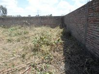 Terreno en Venta en Tala Centro