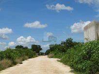 Terreno en venta en Chichi Suárez / Mérida (Yucatán) de127,000 m2
