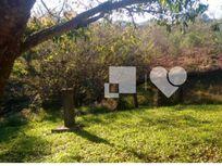 Fazenda com 3 quartos e 4 Vagas, Gravataí, Castelo Branco, por R$ 160.000
