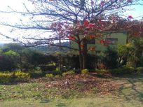 Galpão à venda, 730 m² por R$ 1.272.000 - Jardim dos Pinheiros - Atibaia/SP
