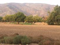 Las Brisas de Chicureo, gran terreno con orilla de cancha