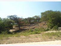 Terreno en Venta en Los Naranjitos
