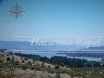 En Venta Parcelas en Rapel 5000m2 - Sector el Manzano