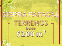Terreno de 1035 mts2 en venta en carretera Mérida-Progreso-Sierra Papacal