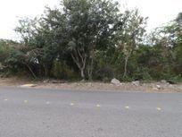Terrenos en la Ceiba de 1,170m² cada uno.