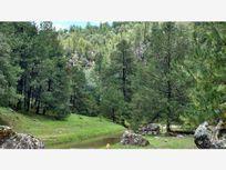 Terreno en Venta en Rancho La Colorada