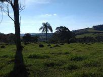 Sítio 40.000 à Venda, Estrada Bragança  Tuiuti.