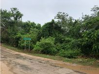 Terreno de 3.5 hectáreas con servicios