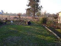 Dos hectareas con casa - Yerbas Buenas
