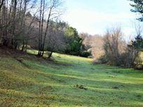 Se Vende Loteo Ecológico de 5000 mts2, sector Lago Angostura