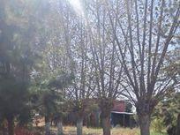 Amplia casa de campo con galpon