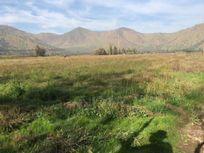 Venta Terreno Rural en San Bernardo