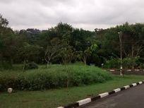 Terreno residencial à venda, Parque Dom Henrique, Cotia - TE0413.