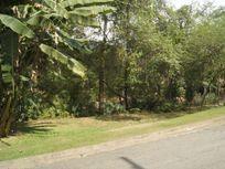 Terreno residencial à venda, Jardim Colibri, Cotia - TE0764.