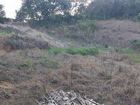 Terreno residencial à venda, Granja Viana II, Cotia.