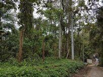Terreno residencial à venda, Jardim Santa Paula, Cotia.