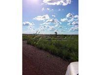 Fazenda com 240 alqueirões em Araguacema TO