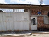 Terreno habitacional en renta en Roma, Irapuato, Guanajuato