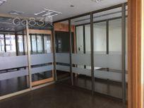 Renta - Oficina - Torre Murano - 220 m - $105,600