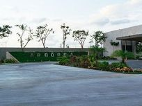 Terrenos en Exclusiva Privada en Mérida (475 m2 y 511 m2)
