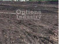 Land for rent Celaya