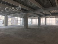 Renta - Oficina - Carso Torre II - 450 m2