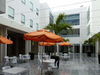 Local Comercial en Renta de 52 m2 en Plaza Comercial en Playa del Carmen