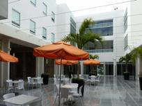 Local Comercial en Renta de 52 m2 en Playa del Carmen