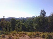 Hermoso terreno sector Tanilvoro