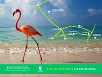 OPORTUNIDAD DE INVERTIR EN EKNAKAN, LOTES DE INVERSIÓN