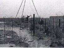 1,706 HA RANCHO GANADERO Venta rumbo a Ojinaga JELICC 190119