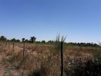 Terrenos camino las Mariposas 5000 metros