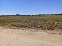 114 Has Rancho Agricola, Dolores Hidalgo, Gto.