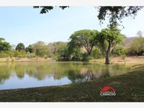 Terreno en Venta en venta; 7 hectáreas en La Caja, Comala, Colima; sembradas de mamey