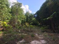 Terreno en Venta en Puerto Morelos Lado de Playa