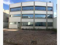 Oficina en Renta en  Colonia Independencia