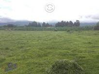 Vendo Terreno en AMECAMECA 10 Hectáreas
