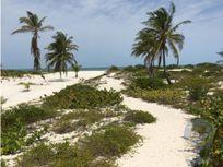 Casa en Venta orilla playa Telchac Puerto