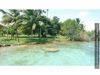Terreno Bacalar  frente a la laguna  2.5 hectareas