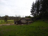 Hermoso Campo de 33 Hectáreas, en Longaví