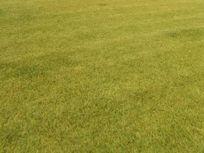 Quillota, Rauten venta de Parcela con casa   5.000 / 232 mt