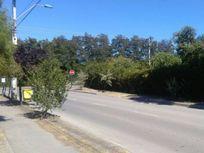 Cercano a  la Municipalidad de Paine