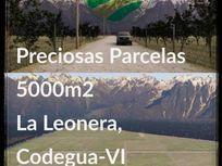 En Venta Parcela de Terreno 5000m2 en La Leonera, Codegua.