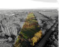 ACCESO RUTA 5 SUR 4,4 hectareas, IANSA ( 14 KM CHILLAN)