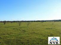 Terreno de 3 hectáreas en Venta